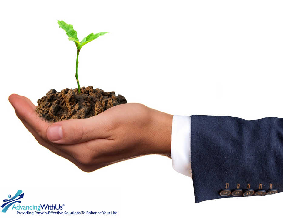 Plant business growth in the palm of your hand